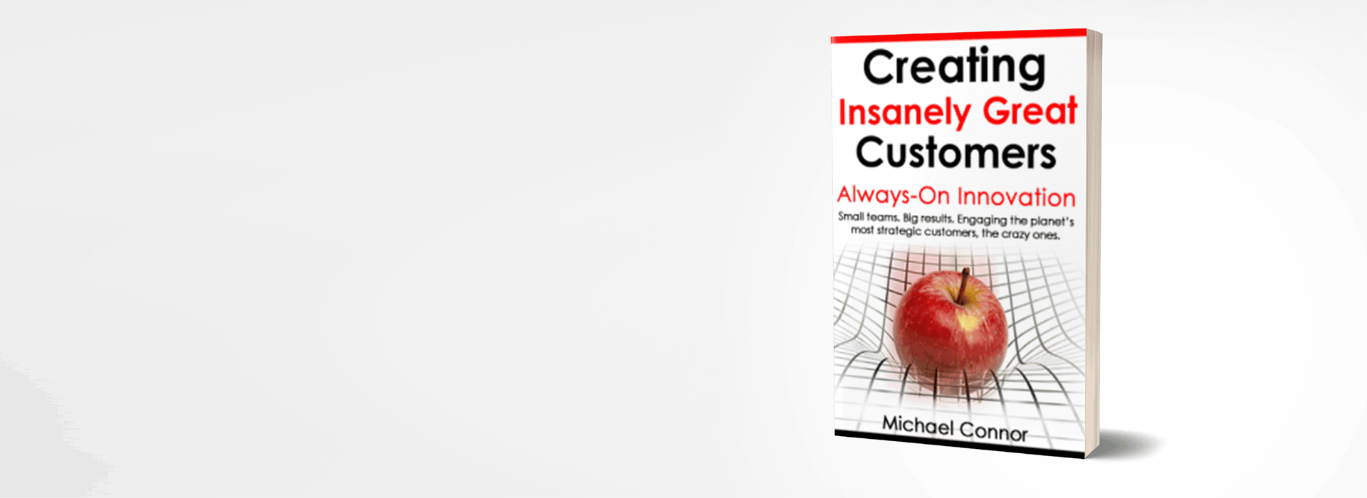 Spice Catalyst Book Creating Insanely Great Customers